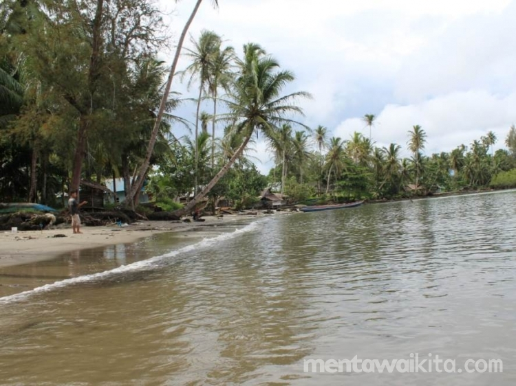 87 Rumah Di Desa Maileppet Terancam Disapu Ombak