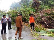 Longsor Tutup Sebagian Jalan di Desa Goiso Oinan