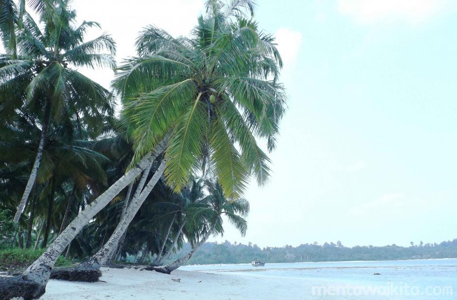 Pasir Putih Pantai Peipei